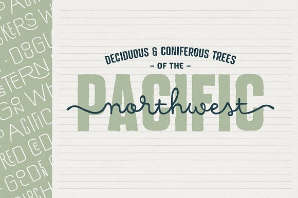 Hawkes Handmade Collection: 74% OFF in Display Fonts - product preview 9