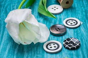 one white tulip and buttons with thr