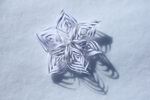 White paper snowflake on the snow