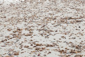 Small stones on the sand.