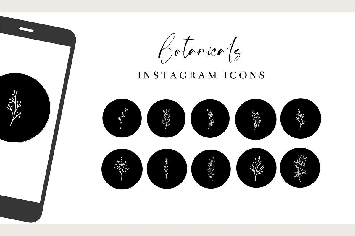Black Botanical Instagram Highlights