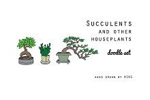 Succulents and other houseplants