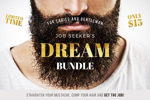 Job Seeker's Dream Bundle