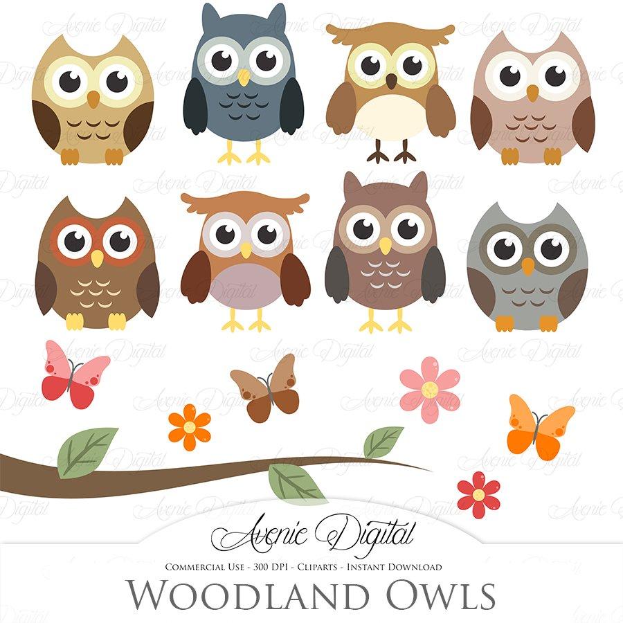 Woodland Owls Clipart and Vectors ~ Illustrations ...