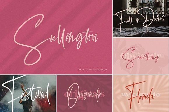 The HUGE Font Bundle (98% OFF) in Sans-Serif Fonts - product preview 29