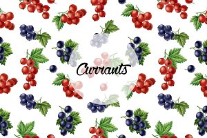 Set of watercolor currants