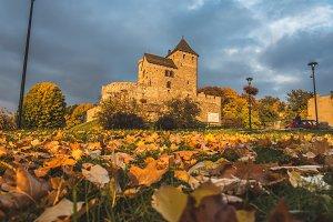 Medieval castle  16