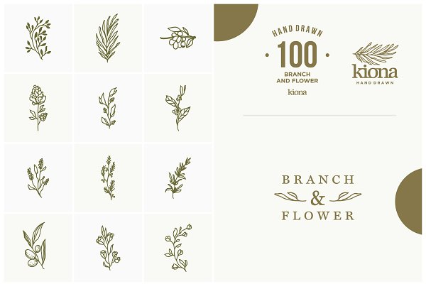 Hand Drawn Branch and Flower element