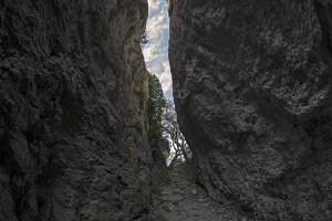 Crimea. View of a narrow gorge.