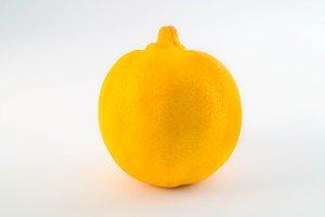Yellow Mandarine Lemon Isolated