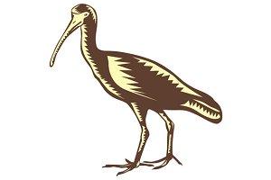 Egret Heron Crane Side Woodcut