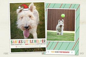 Santa's Helper Holiday Pet Card