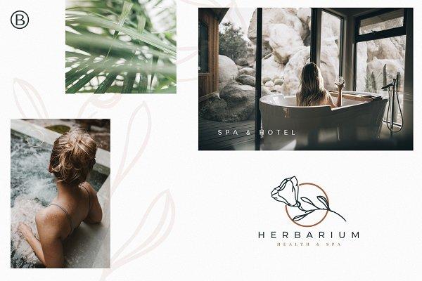 30 Hand Drawn Botanical Logos