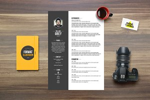 Grey - Resume template Illustrator