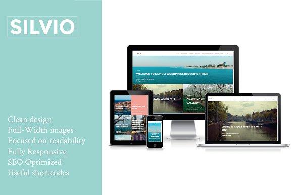 Silvio- Travel WordPress Theme