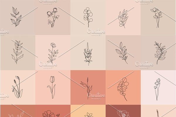 Minimalist Botanical Line Drawings