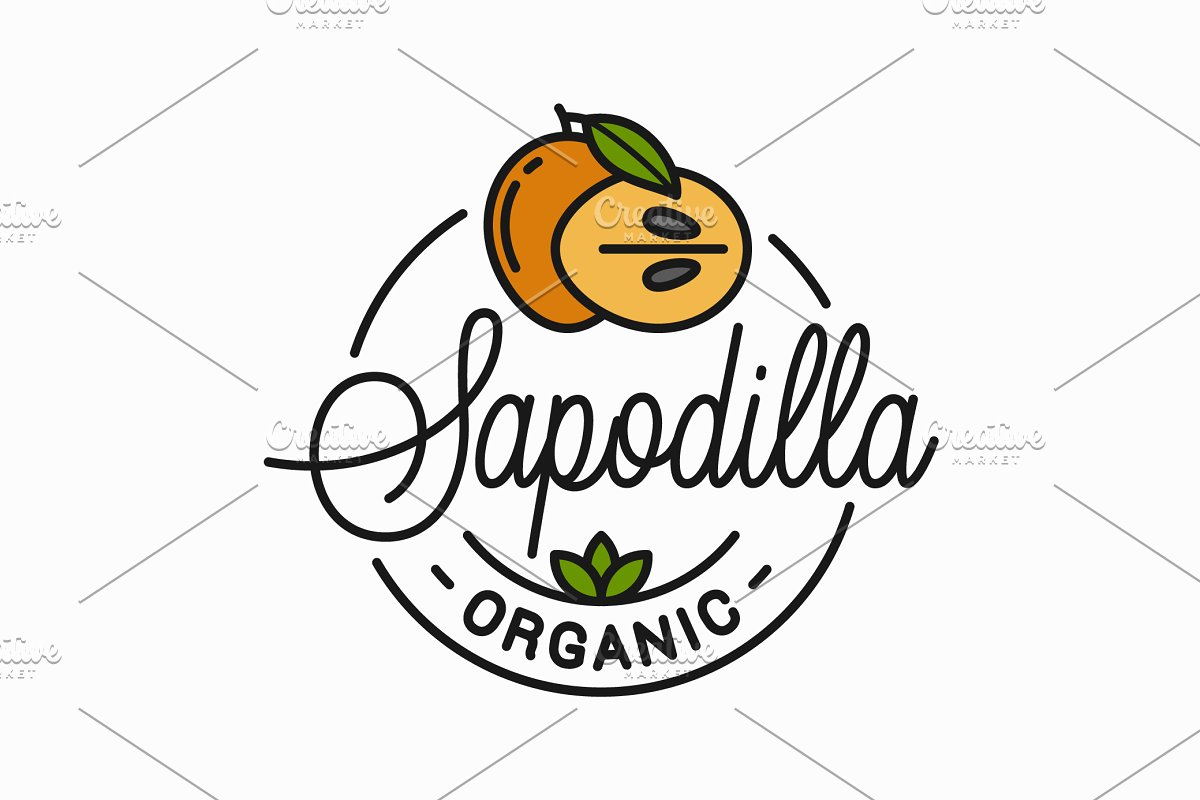 Sapodilla fruit logo. Round linear. in Illustrations
