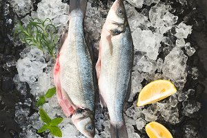 Raw seabass with lemon
