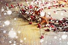 Christmas decoration, wreath