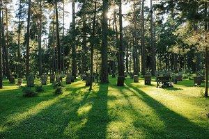 skogskyrkogården cemetery no.3