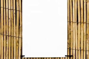 Bamboo Cane Background & Text Space