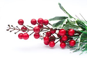 Christmas berries decoration