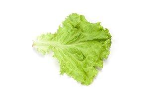Salad leaf