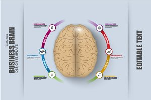Business Brain Timeline Infographic