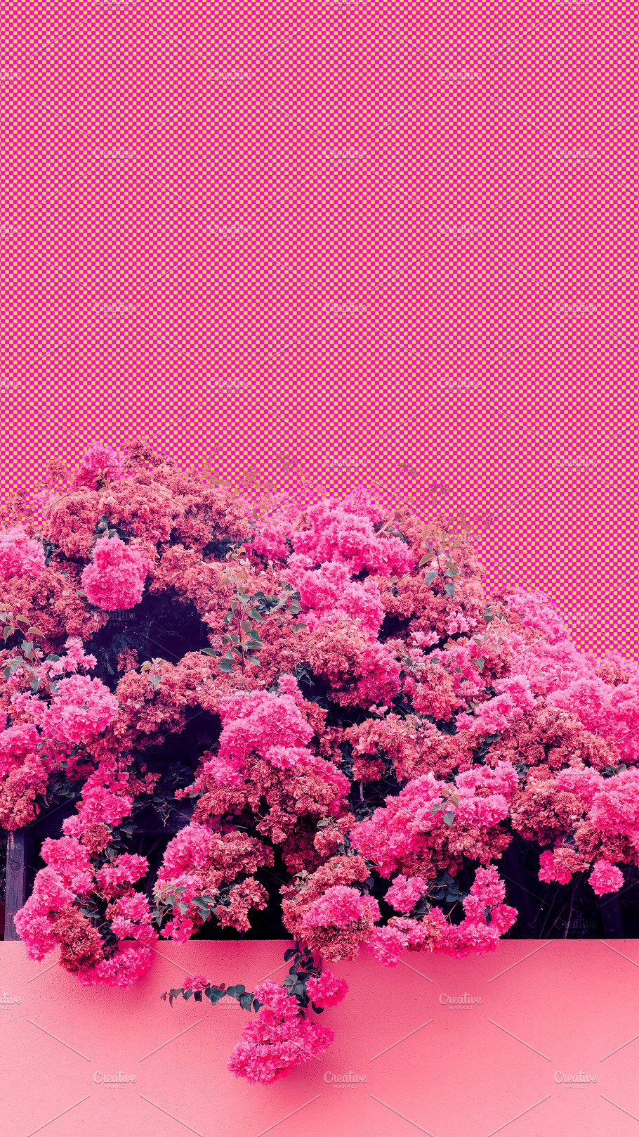 Aesthetic Collage Wallpaper Pink B High Quality Nature Stock