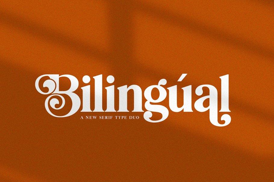 Bilingual Serif Font Duo in Serif Fonts