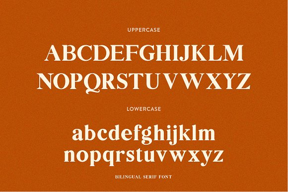 Bilingual Serif Font Duo in Serif Fonts - product preview 7