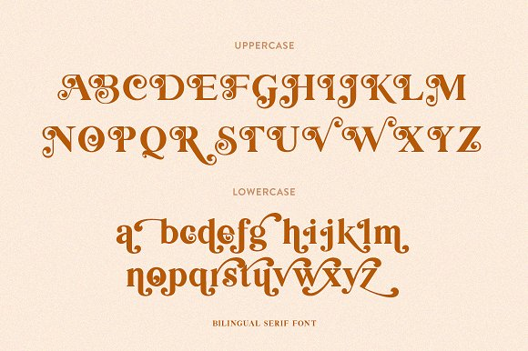 Bilingual Serif Font Duo in Serif Fonts - product preview 8