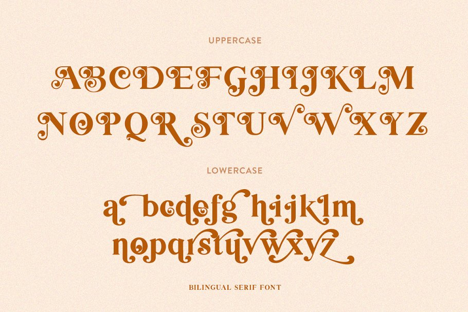 Bilingual Serif Font Duo in Serif Fonts - product preview 9