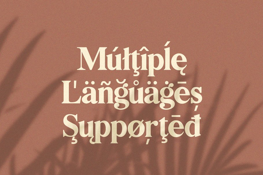 Bilingual Serif Font Duo in Serif Fonts - product preview 10