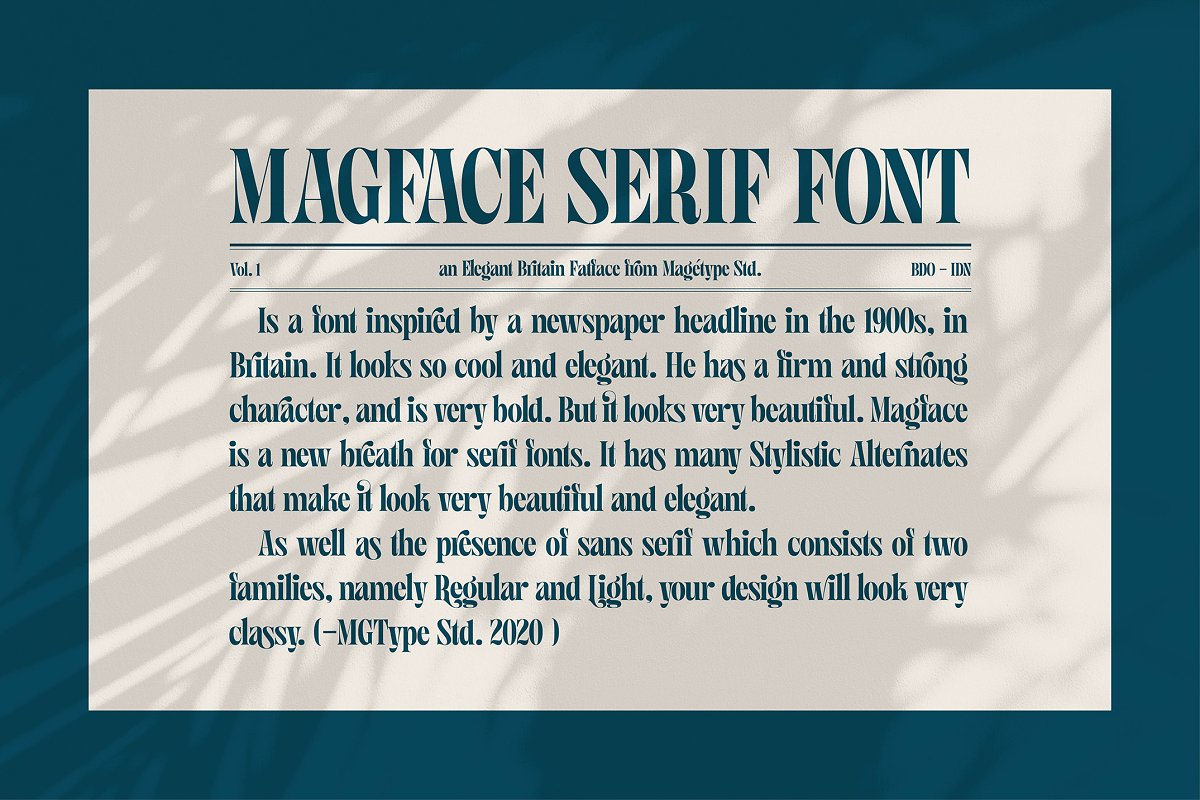 Magface in Serif Fonts - product preview 4