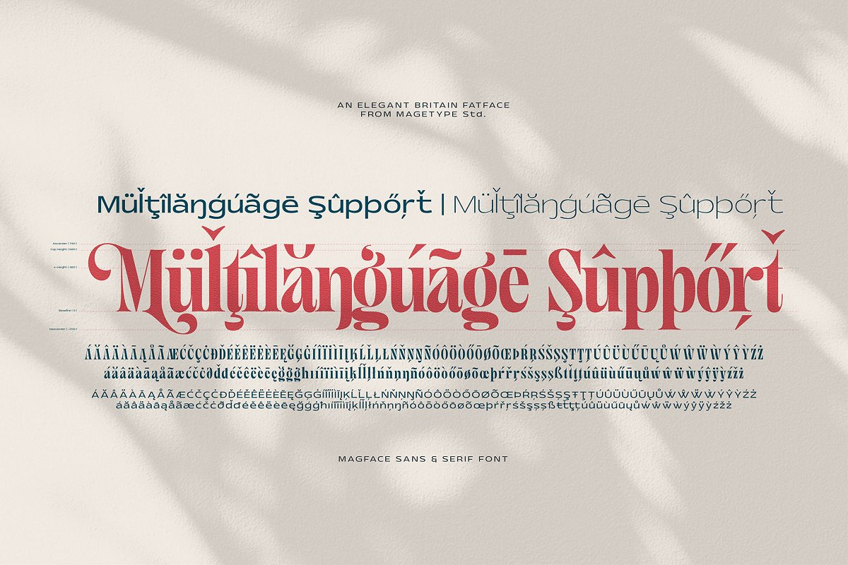 Magface in Serif Fonts - product preview 11