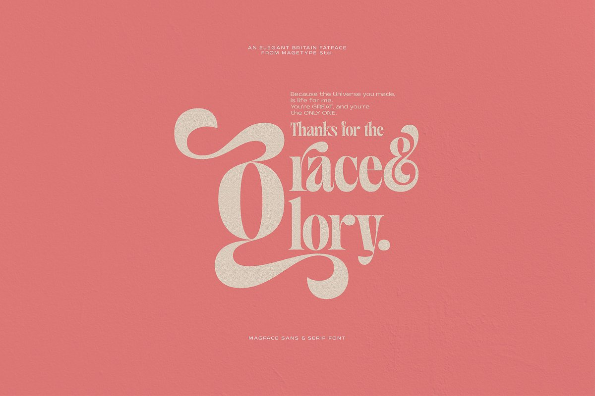 Magface in Serif Fonts - product preview 20