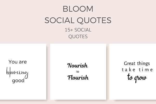 Bloom Social Quotes (15+ Images)