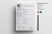 Professional Resume V.2