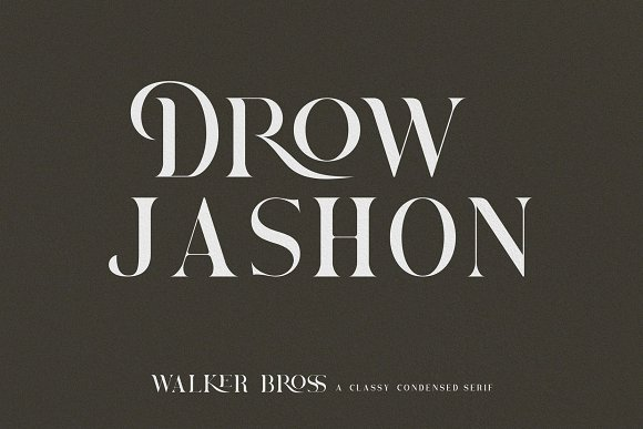 Brovile. A Classy Serif in Serif Fonts - product preview 2