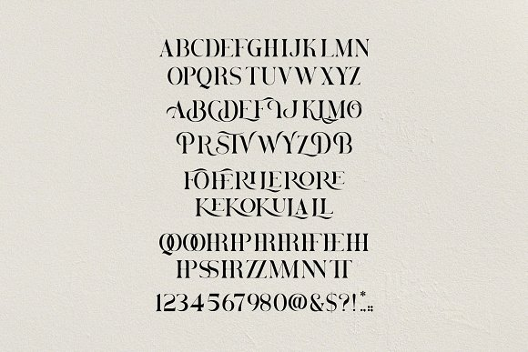 Brovile. A Classy Serif in Serif Fonts - product preview 9