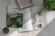 Theplant | Magazine Template