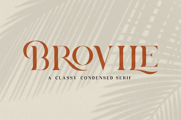 Brovile. A Classy Serif in Serif Fonts - product preview 11
