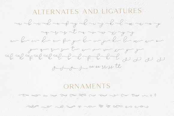 Gamour - Elegant Serif Font + Bonus in Serif Fonts - product preview 7