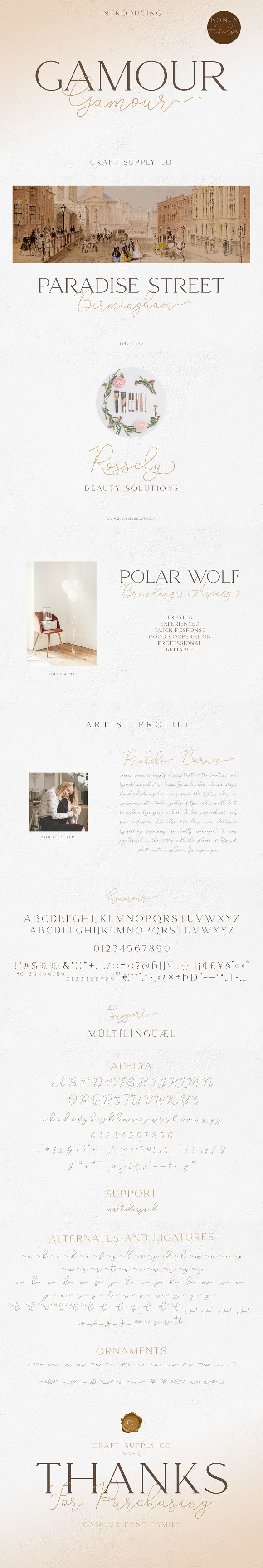 Gamour - Elegant Serif Font + Bonus in Serif Fonts - product preview 9