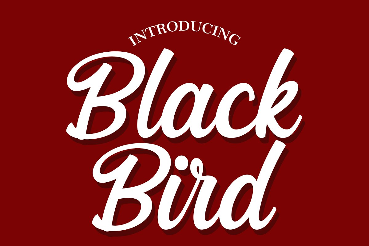 Black Bird Font Duo