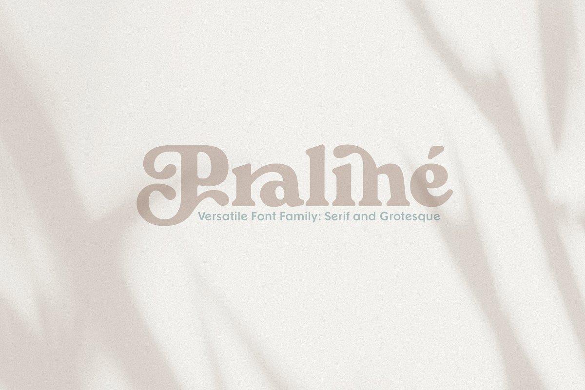 Praline Font Family in Serif Fonts