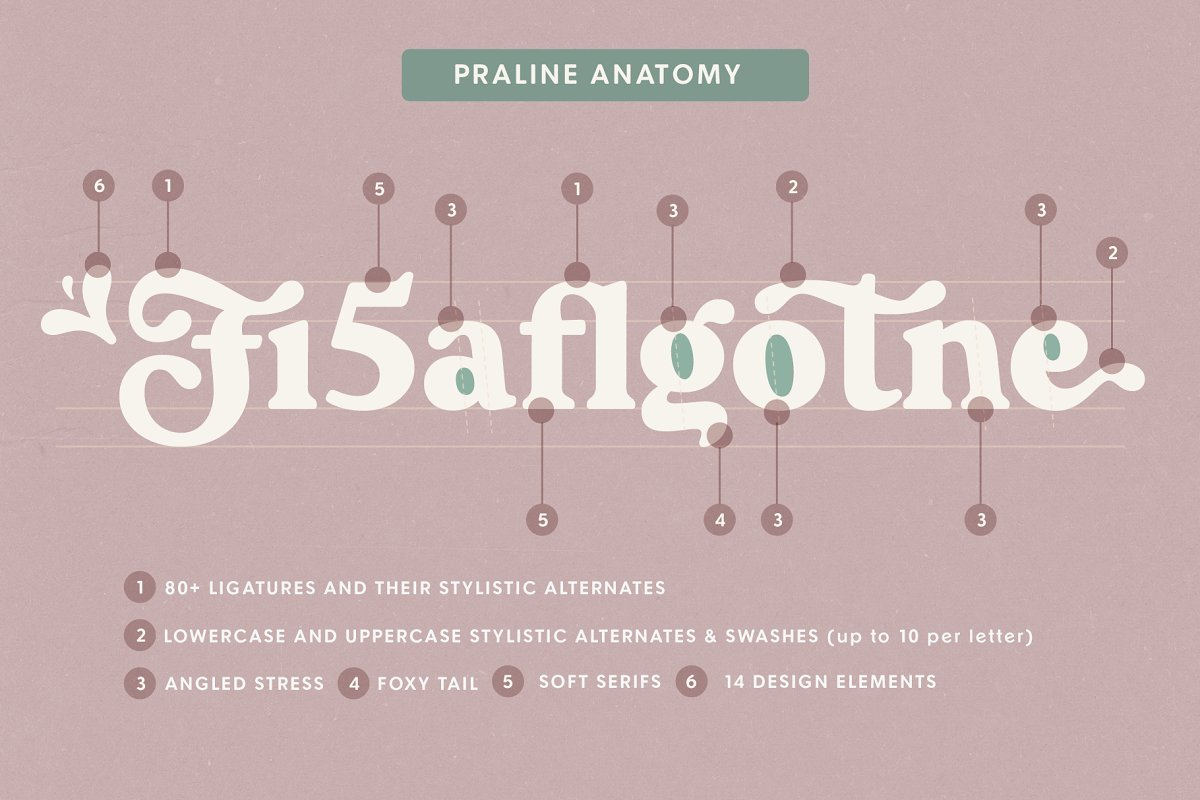 Praline Font Family in Serif Fonts - product preview 14