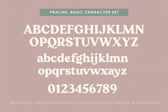 Praline Font Family in Serif Fonts - product preview 15