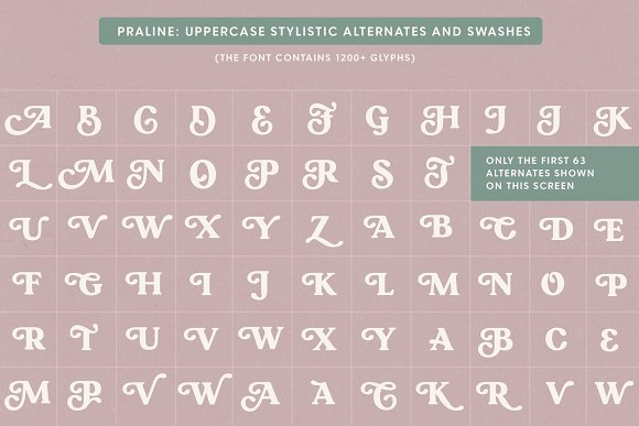 Praline Font Family in Serif Fonts - product preview 17
